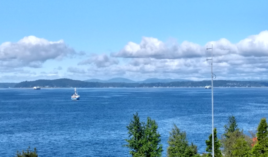 The view of the Puget Sound from Olympic Sculpture Park in Seattle. A few boats are passing along the water